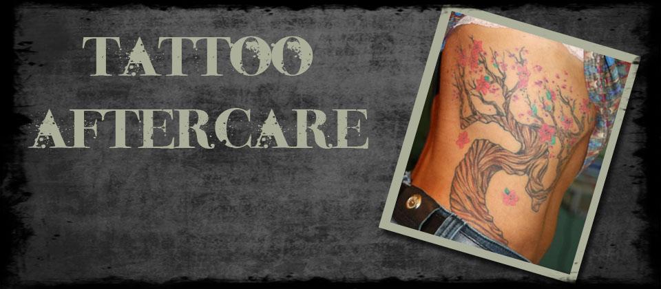 Living Canvas Tattoo Body Piercing Art Gallery Columbia Mo
